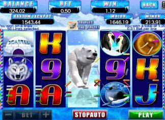 The top typical slots